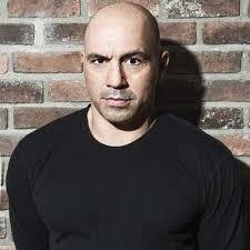 Joe Rogan hair