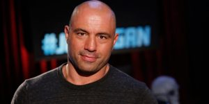 joe rogan bald