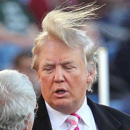 donald trump hair transparent